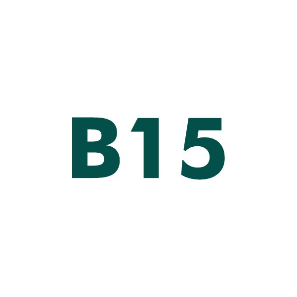 B15 domain name for sale