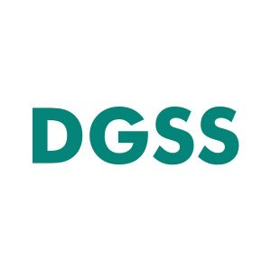 DGSS.net domain name for sale