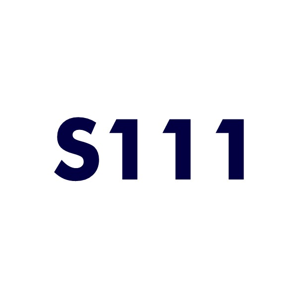 s111 domain name for sale