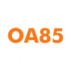 OA85 domain name for sale