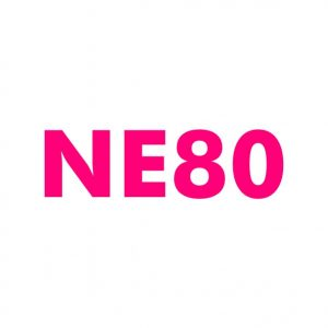 NE80.com Domain name for sale