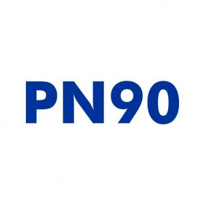 PN90.com Domain name for sale